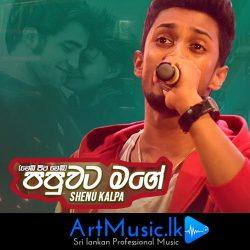 artmusic.k Papuwata Mage (Wedi Pita Wedi) - Shenu Kalpa